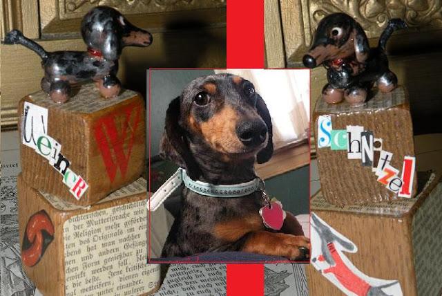 weiner dog status iramency