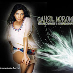 Multi Talented Model   Gaysil Noronha