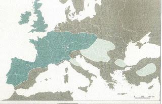 Les Celtes dans l'Antiquité : de la période de Hallstatt à la civilisation celtique laténienne 5