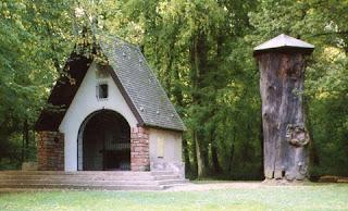 Traditions celtes : le chêne, arbre sacré 1
