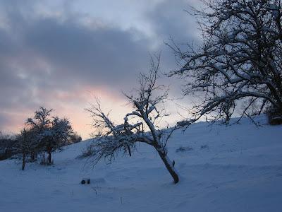 Solstice d'hiver 1