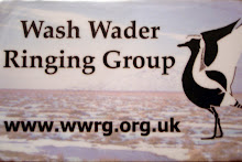 WASH WADER RINGING GROUP