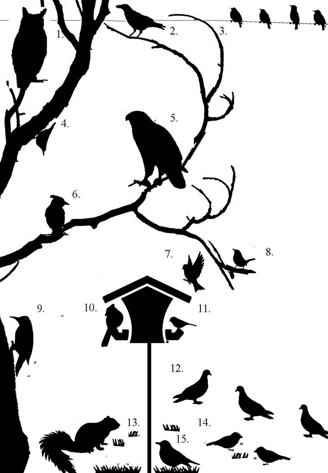 Wild Birds Unlimited: Books to help you with the #GBBC