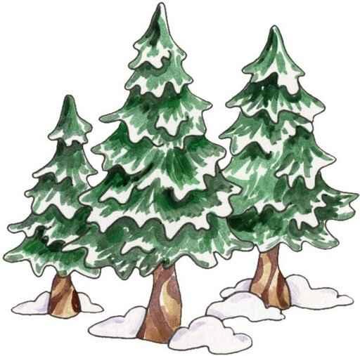Gyermek kuckó: Három fenyőfa