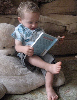 A Boy and His Book