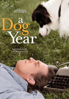 descargar A Dog Year – DVDRIP LATINO