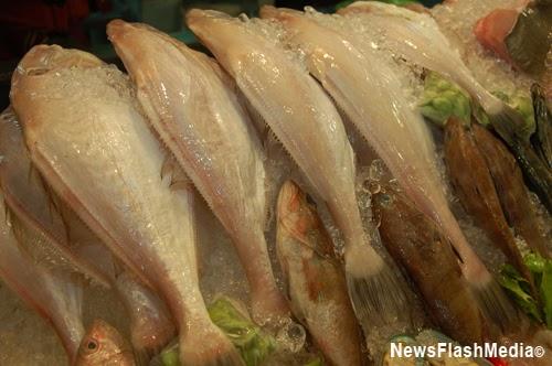 NewsFlashMedia: Chicken Fish What?