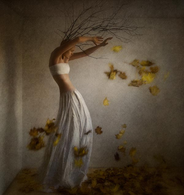 autumn by Daria Endresen