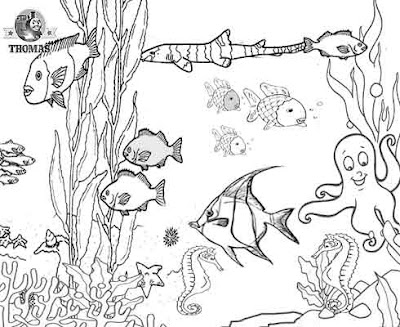 Disney mermaid dome trolley case animal galery for Animal planet coloring pages