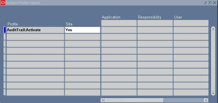 Ensure that this profile option is set to yes at site level and not overwriten by a No at application level ( valid values are yes or null when it is ...  sc 1 st  Oracle Apps Gurus - Blogger & Oracle Apps Gurus: Enabling AuditTrail Functionality to capture ...