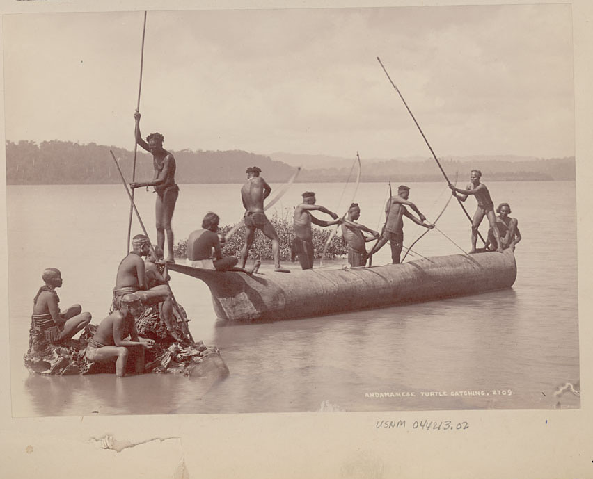 Group of Andaman Men and Women in Costume, Some Wearing Body Paint And with Bows and Arrows, Catching Turtles from Boat on Water