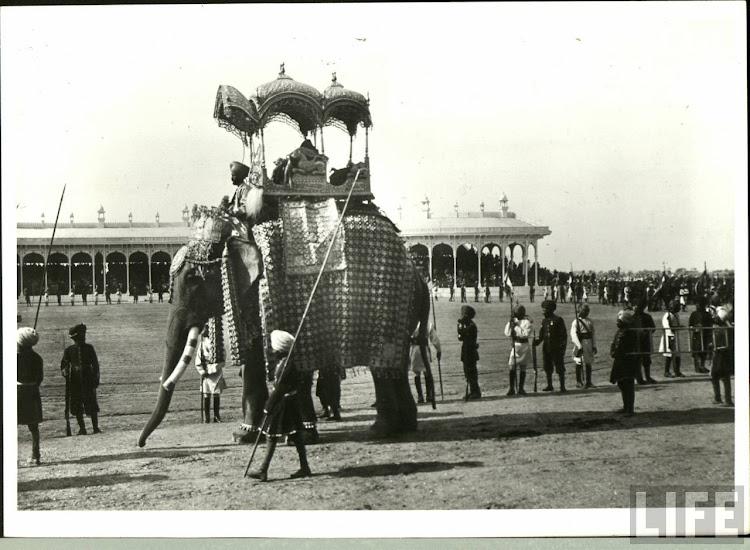 Elephant in Delhi Durbar of 1903