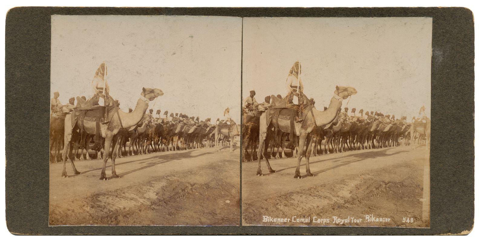 Bikaneer Camel Corps Royal Tour