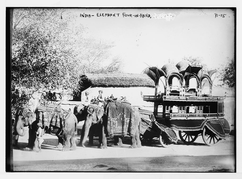 Four Elephants Pulling Carriage