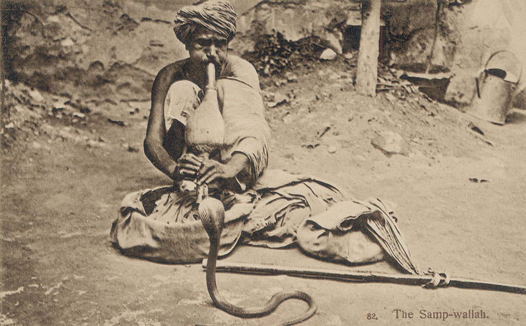 Snake Charmer, in Costume and Playing to Cobra