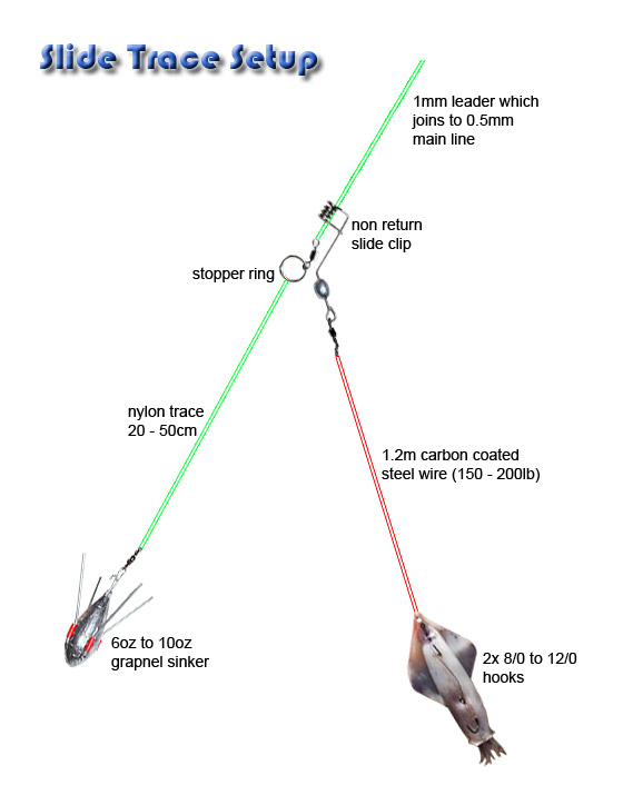 Saltwater Rigging Basics New Hampshire Saltwater Fishing Digest - line leader