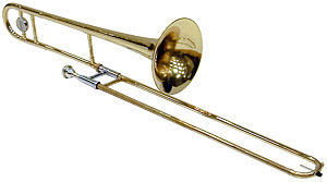 A retinal rod can be modeled, rather surprisingly, as a trombone.