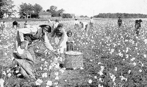 U.S. Social History Project: Slavery: North vs. South