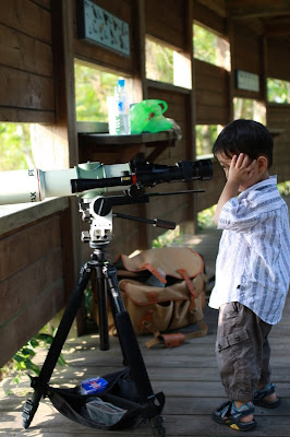 新鮮人。First time Bird Watcher