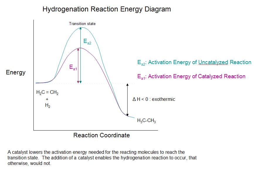 This is a picture of Obsessed Label the Energy Diagram for a Two Step Reaction