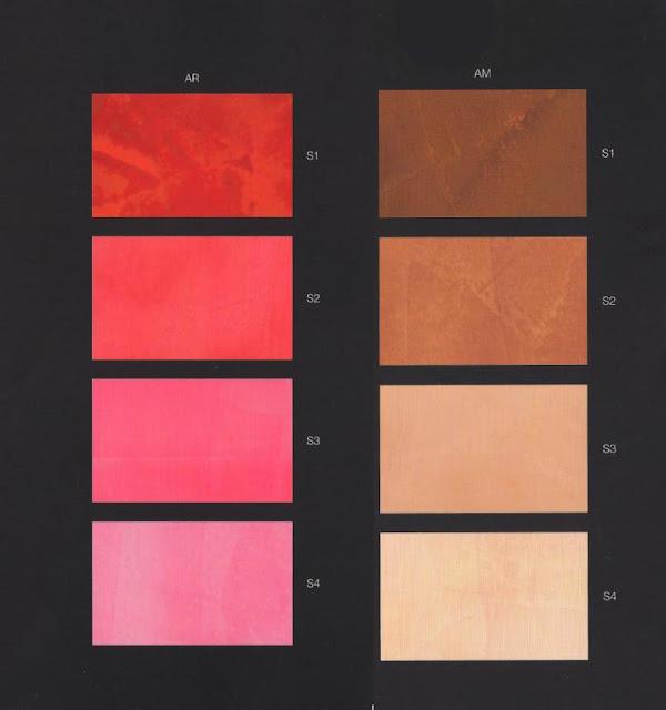 Mazzetta colori caparol for Gamma colori pareti