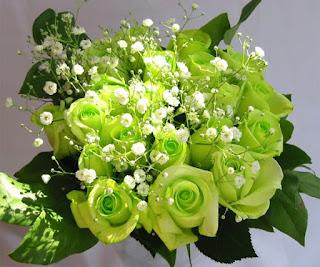 Gambar Bunga Mawar Warna Hijau Gambar Bunga