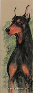Doberman - The Aristocrat By Cori Solomon