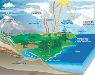8ed5272b4d El Sol forma un papel importante en el ciclo del agua ya que evapora el  agua para que ésta continúe con su ciclo.