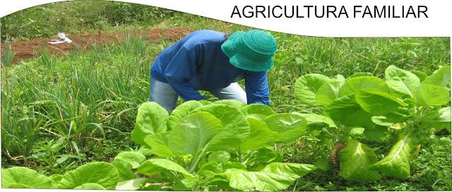 Resultado de imagem para agricultura familiar na Colômbia