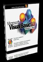 Microsoft Visual Basic 6 Portable 1