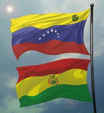 Resultado de imagen para venezuela y bolivia