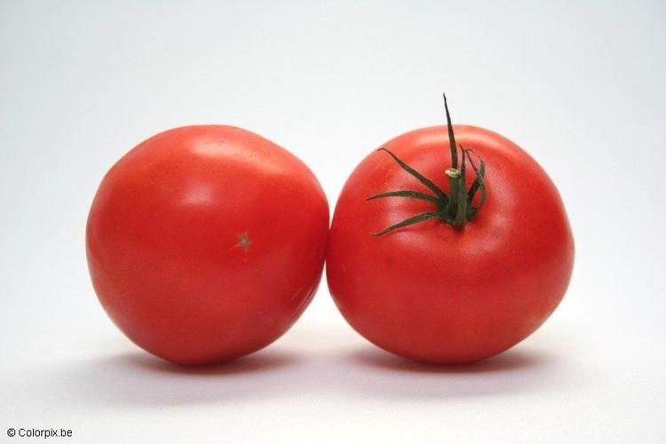 Las Mejores Imagenes De Tomates