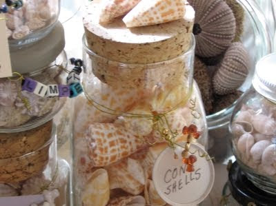 jars with tags filled with seashell collection