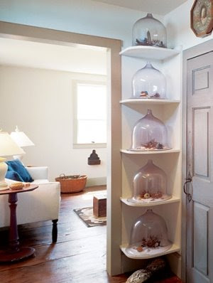 seashell decorating with cloches