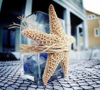 starfish on vase