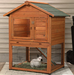 Rabbits And Rabbit Hutches