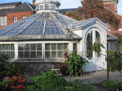 Vintage Greenhouses Potting Sheds Victoria Elizabeth Barnes