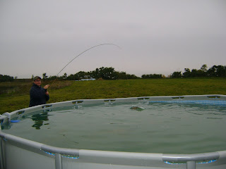 Herman Brothers Blog: Trout Fishing Pond for Elmwood All