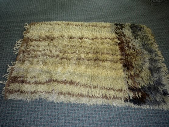 Area Rug Cleaning Specialists Victoria Bc What Does A