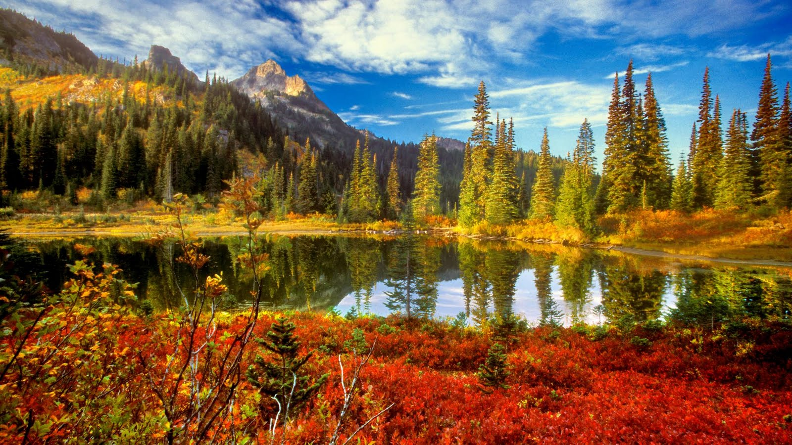Rahim is here collection of cool nature wallpapers - Pretty nature backgrounds ...