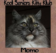 Member of the Seniors Kitty Klub