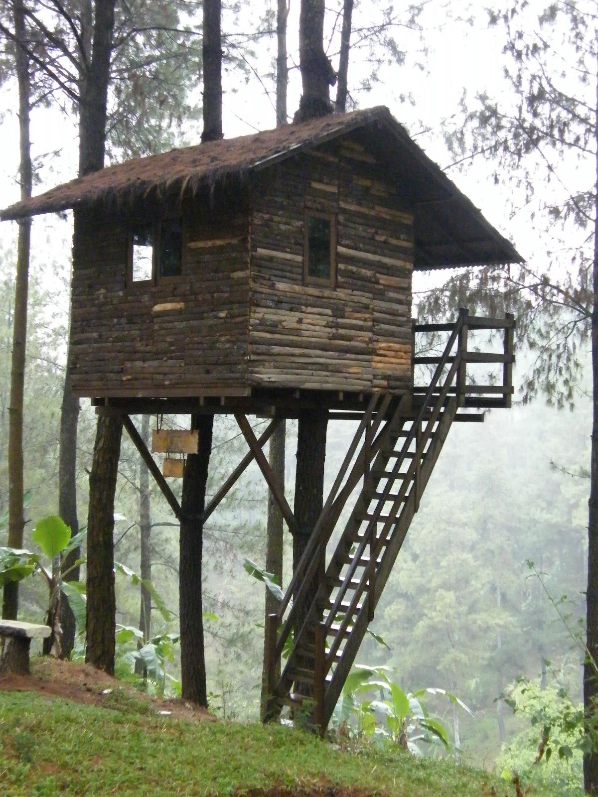 Rumah Pohon Taman Dayu : rumah, pohon, taman, Rumah, Taman, Pandaan,, Penting!