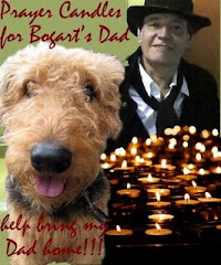 My NOMSS Friend Bogart's Dad went to Heaven.