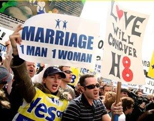 Miss california anti gay marriage