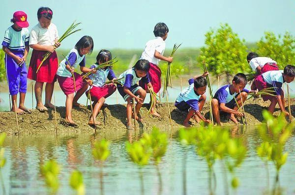 I S B D : Peran Remaja dalam Melestarikan Lingkungan