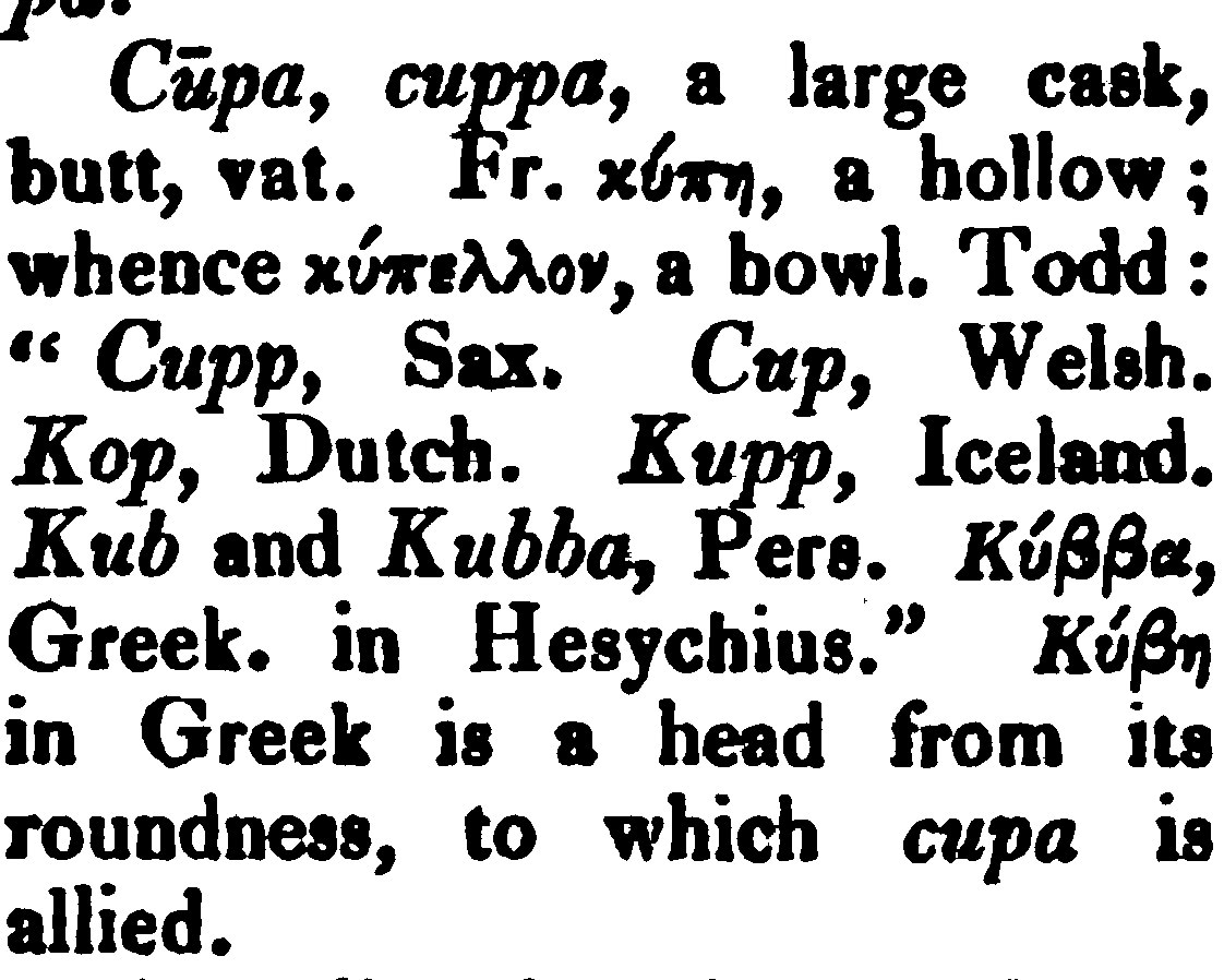 ENGLISH WORDS OF (UNEXPECTED) GREEK ORIGIN.: Etymology of cup