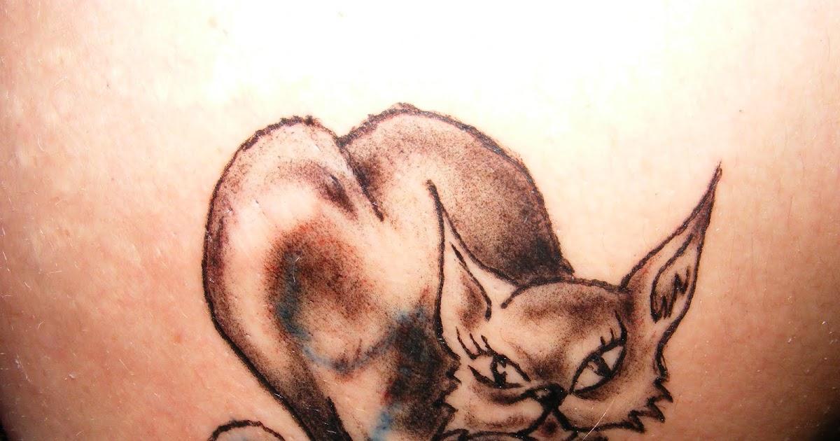 Pussy Cat Tatoo 63