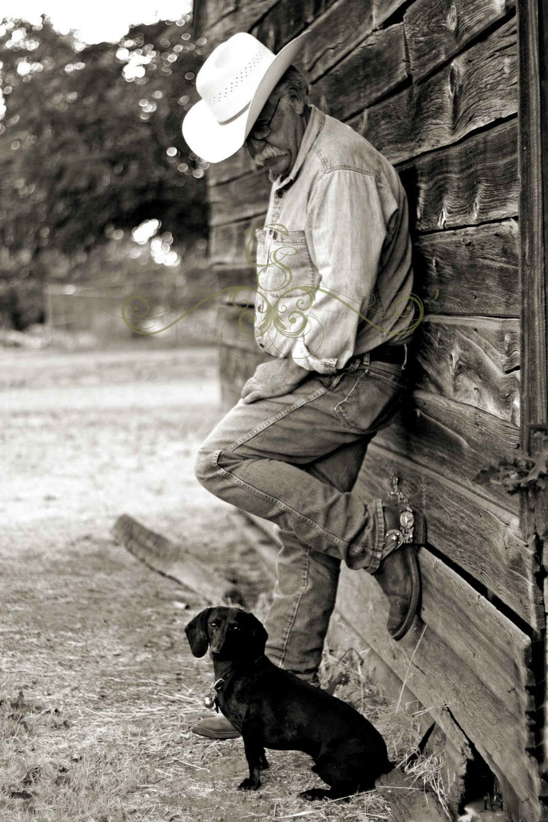 Carmen Stiern Photography A Cowboy And His Dog