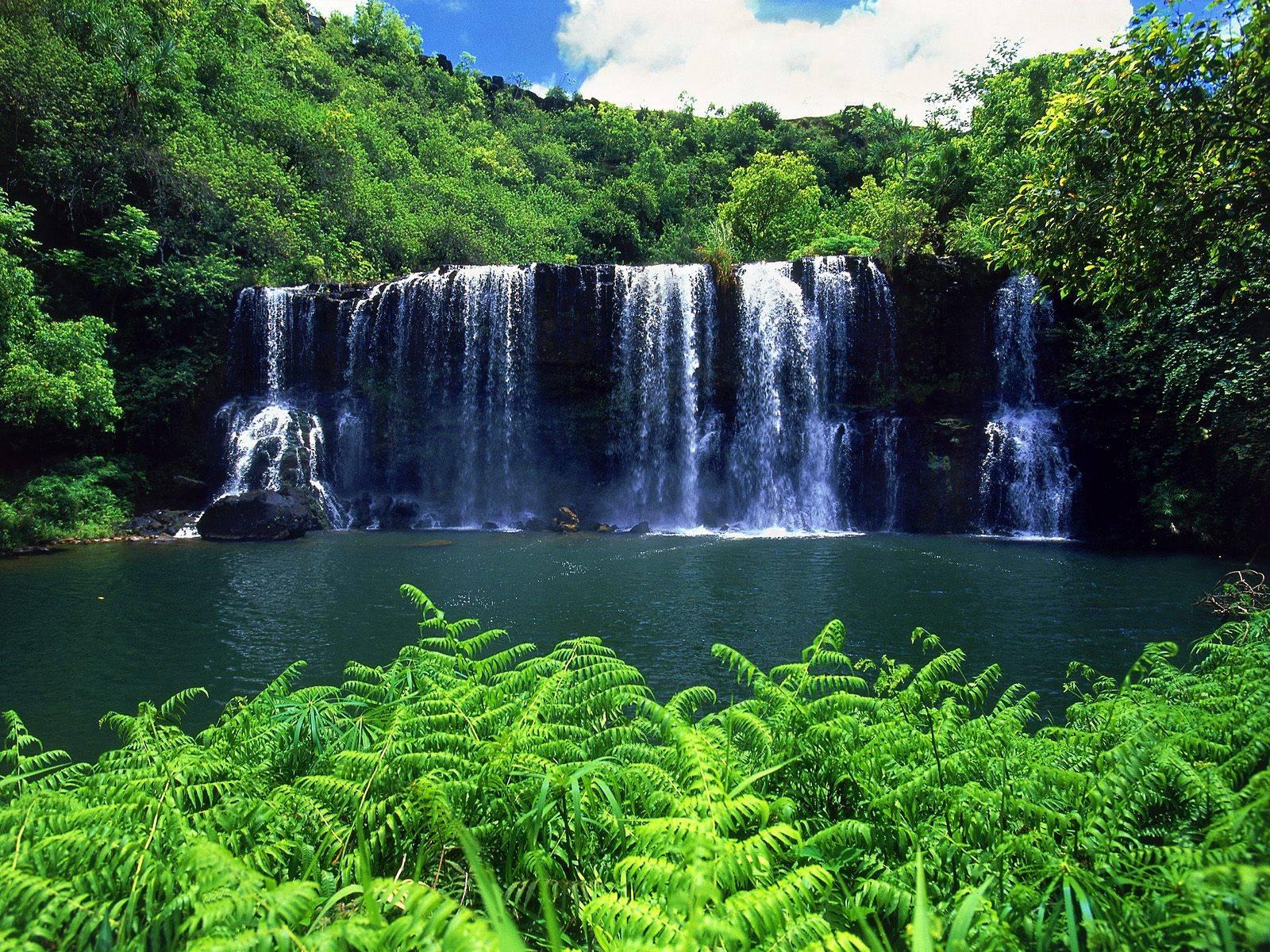 Cataratas en Kauai - Hawaii   De todo un poco...noticias ...