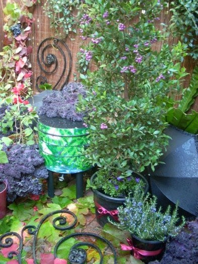 Balcony Garden Dreaming: Edible gothic gardening balcony ...